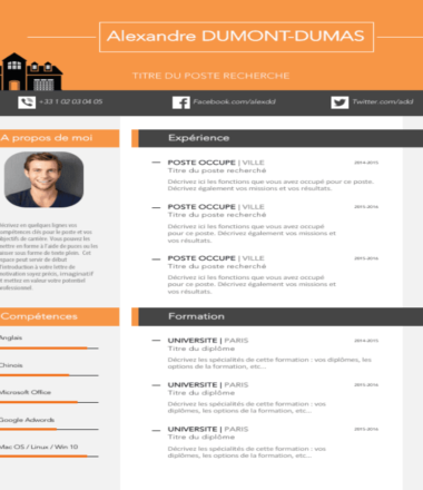 Example  CV of Real Estate Agent