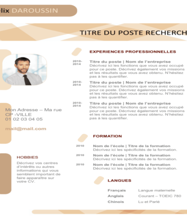 Example of a CV Ready to fill
