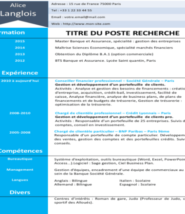 Sample CV to fill