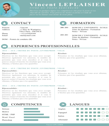 Sample Accounting CV