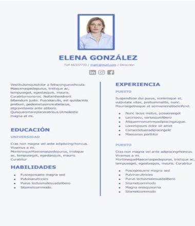 Currículum Vitae #14 Example