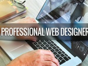 what-can-a-professional-web-designer-do-that-i-cant