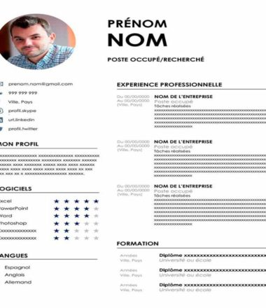 CV example with Photo