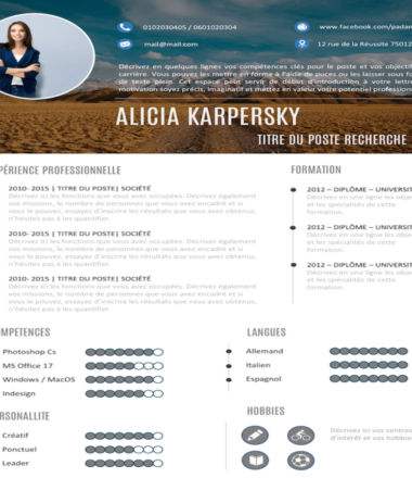 Example of Graphic CV